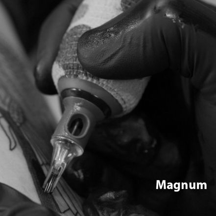 Magnum Raptor Cartridge